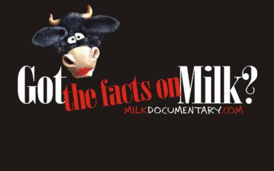 ¿Qué sabes sobre la leche?