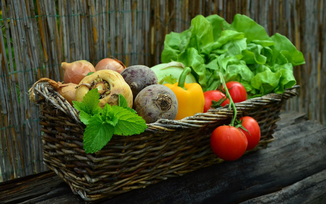 Alimentación y nutrición basada en vegetales
