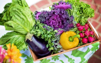 Pautas para comenzar una alimentación sana, real, consciente