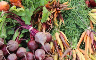 Alimentate sin agroquímicos